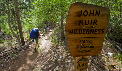 Muir-Sign